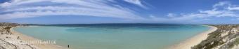 coral bay6
